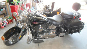 2006 Softail Classic for sale