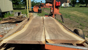 Walnut slabs and boards will be ready in September 2018