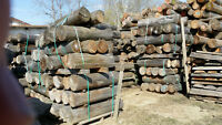 cedar landscape logs,use ,Ties, wall,any log or accent available