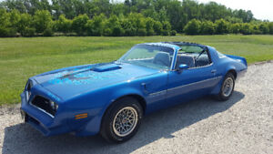 Wanted 1977 to 79 trans am. Cash in hand
