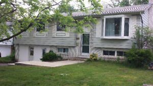 House with 4+1 Bedroom for rent, walking distance to lakeshore