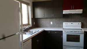 New house with 3 bdrm rent for a family at Harbour Landing area Regina Regina Area image 8