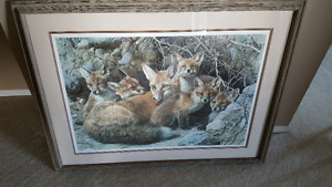 Carl Brenders Fox Family