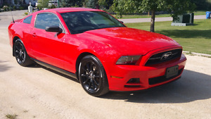 2013 Ford Mustang V6 305 HP Black Wheels FINANCE Priced to Sell