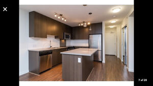 SURREY DOWNTOWN LOCATION! BREATHE TAKING VIEW! FULLY FURNISHED