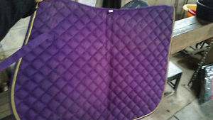 Billy Cook breast collar,english saddle pads & more..need to go! Cambridge Kitchener Area image 4