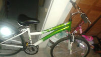 Women's Mountain Bike in Excellent Condition