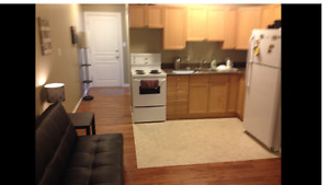 Cathedral- Bachelor Condo w/ Parking and Balcony