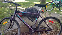 My partner BIKE - Urgent selling, price to be agreed