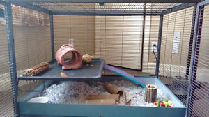 Cage for chinchilla, rats, degus, hamsters