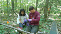 Youth Mentor - Forestry/Wildlife