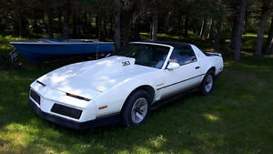 1984 Pontiac Trans Am Coupé (2 portes)