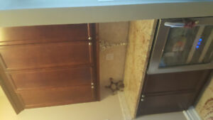 Kitchen Cabinets and Granite  Counters