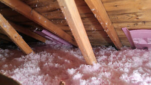 Stop Ice With Insulation and Save Money on Your Heating Bills!! London Ontario image 1