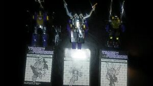 G1 Transformers Insecticons