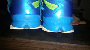 LEBRON NIKE SOLDIER 8S