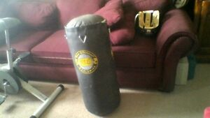 Everlast Punching Bag, 20 kg, 32 inches long, no chains