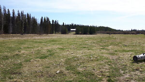400 acres of  good hay land to be cut or you bring your cattels Williams Lake Cariboo Area image 3