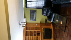 TWO BEDROOM FURNISHED DOWNTOWN APARTMENT