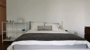 Studio Fully furnished Condo Downtown - 45 Charles Street East