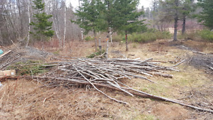free long sticks perfect for whatever .. back yard bonfires