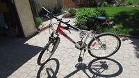 Used bike in good condition: small frame, shocks, 18-speed