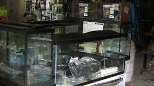 "FLUVAL ACRYLIC VISTA"" PANORAMIC""  LED AQUARIUM STARTER KITS Windsor Region Ontario image 2"