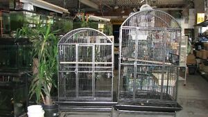 BIRD CAGES Windsor Region Ontario image 4