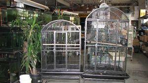 BIRD CAGES Windsor Region Ontario image 4