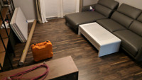 Vinyl, laminate, hardwood, and tile!