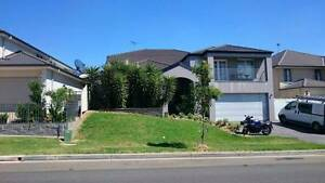 Own Lounge + Bedroom + Ensuite + Gnd Flr Mod Aus Home No Bills! Glenwood Blacktown Area Preview
