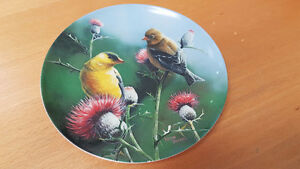 16 collectors bird and owl plates, original boxes and certificat