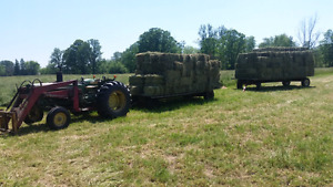 FIRST CUTTING HAY (revised)