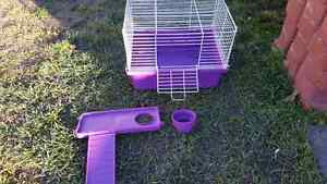 Small animal cage. Rodent