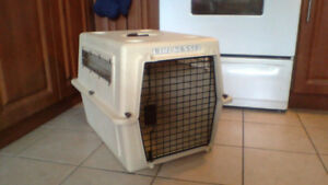 Dog Crate (Carrier) 20 inch Tall $30 (Sweet)