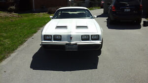 For Sale 1979 Pontiac Firebird Formula