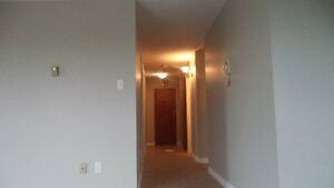 FIRST MONTH'S FREE RENT: GREAT CONDO St. John's Newfoundland image 2