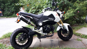 Honda Grom 2015 with Leo Vince pipe