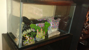 10 gal tank and accessories  $50