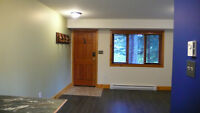 Sunny Alpine Meadows suite with view