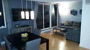 Beautiful  3 1/2 Condo for rent in St-Henri