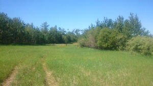 Acreage for sale in Smoky Lake county CHEAP