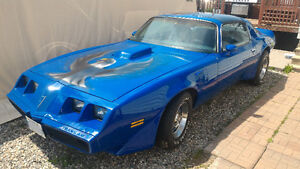 1981 Pontiac Firebird Trans Am - Out Of Storage And Ready To Go