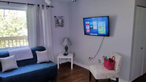 Newly renovated 1 Bedroom furnished NON SMOKING apartment.
