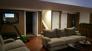 392 Marla Crescent – 4 years old - Finished Up and Down!! Windsor Region Ontario image 14
