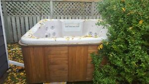Crystal waters hot tub