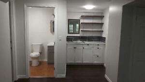 Beautiful, all inclusive, clean bachelor apartment for rent