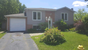 4-brm raised ranch in desirable Lynden Hills, avail.August 1st