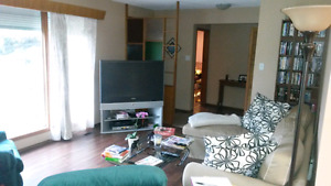 Available immediately, room in quiet house in Greenfield