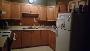 Large 3 bedroom apartment with one roommate